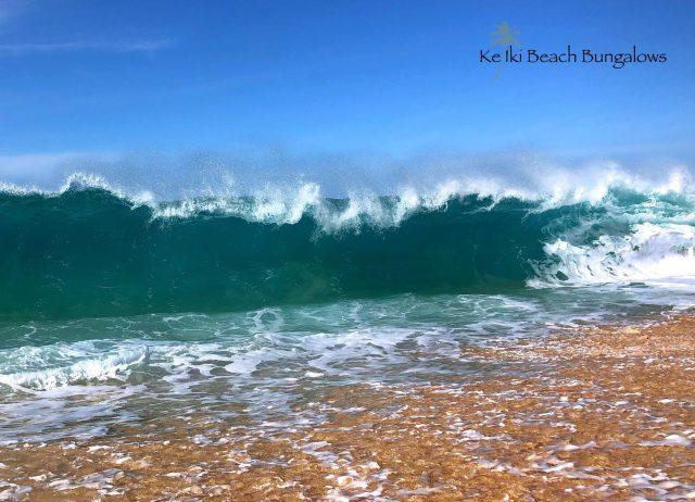 Looks like we're getting an early preview of the winter swell as September comes to a close. Who's ready for some wave action!? 🌊 . . #keikibeachbungalows #keikibeach #northshoreoahu #northshore #pupukea #oahu #hawaii #hawaiilife #luckywelivehawaii #luckywelivehi #instahawaii #hawaiiunchained #808 #808life #808state #shorebreak #bigwave #bigwaves #endlesssummer #islandlife #islandliving #aloha #livealoha #alohastate #alohavibes #alohastateofmind