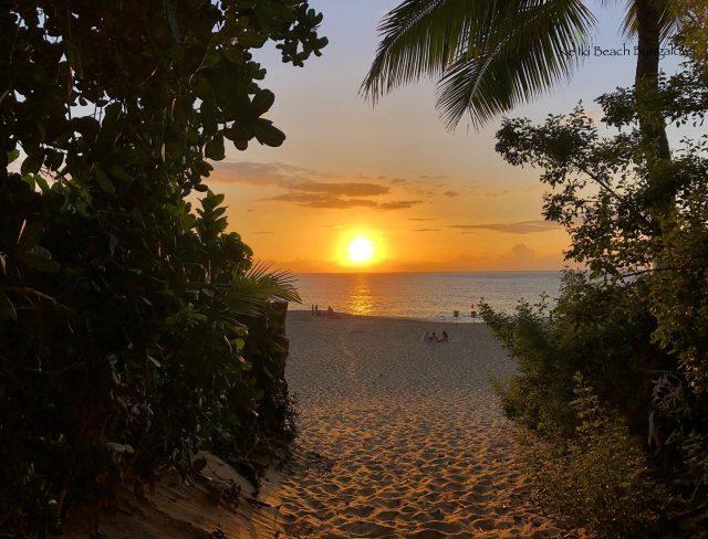 Golden hour gateway to Ke Iki Beach 🌴🌅🌴 . . #keikibeachbungalows #keikibeach #northshoreoahu #northshore #pupukea #oahu #hawaii #hawaiilife #luckywelivehawaii #luckywelivehi #instahawaii #hawaiiunchained #808 #808life #808state #hawaiiansun #hawaiisunset #beachbungalow #endlesssummer #islandlife #islandliving #aloha #livealoha #alohastate #alohavibes #alohastateofmind