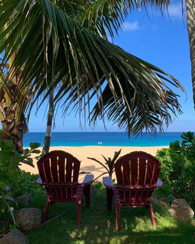 Front row seats available, with shade 😎 . . #keikibeachbungalows #keikibeach #northshoreoahu #northshore #pupukea #oahu #hawaii #hawaiilife #luckywelivehawaii #luckywelivehi #instahawaii #hawaiiunchained #808 #808life #808state #beachfront #hawaiiantropic #beachbungalow #endlesssummer #islandlife #islandliving #aloha #livealoha #alohastate #alohavibes #alohastateofmind