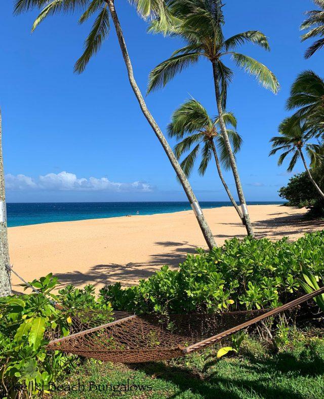 Unlimited offer: FREE #hammocktime when you book your stay at KBB 😁  Call Greg at 1-866-638-8229 for available dates 🌴 . . #keikibeachbungalows #keikibeach #northshoreoahu #northshore #pupukea #oahu #hawaii #hawaiilife #luckywelivehawaii #luckywelivehi #instahawaii #hawaiiunchained #808 #808life #808state #beachfront #hammocklife #beachbungalow #endlesssummer #islandlife #aloha #livealoha #alohastate #alohavibes #alohastateofmind