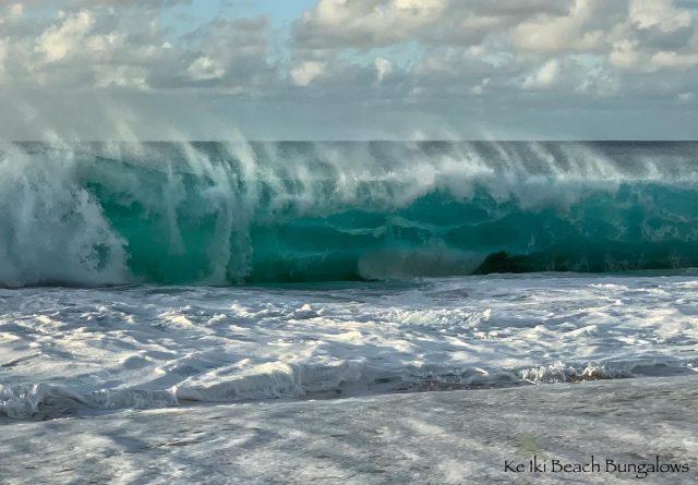 Winter Wonderland, North Shore Style 😁 . . #shorebreak #keikibeachbungalows #keikibeach #northshoreoahu #northshore #pupukea #oahu #hawaii #hawaiilife #luckywelivehawaii #luckywelivehi #instahawaii #hawaiiunchained #808 #808life #808state #shorebreakers #bigwave #bigwaves #endlesssummer #islandlife #islandliving #aloha #livealoha #alohastate #alohavibes #alohastateofmind