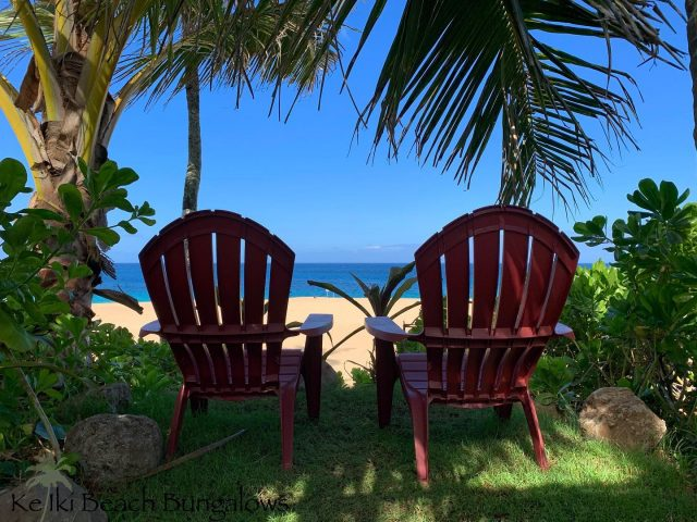 Forget what's playing on the TV right now, we have a much better view right here 🌴 Any takers? . . #keikibeachbungalows #keikibeach #northshoreoahu #northshore #pupukea #oahu #hawaii #hawaiilife #luckywelivehawaii #luckywelivehi #instahawaii #hawaiiunchained #808 #808life #808state #beachfront #hawaiiantropic #beachbungalow #endlesssummer #islandlife #islandliving #aloha #livealoha #alohastate #alohavibes #alohastateofmind