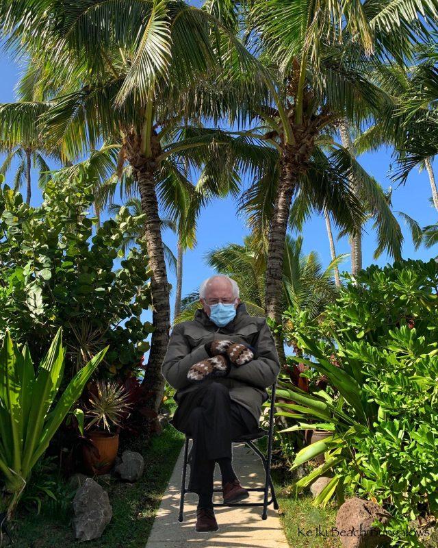 You're facing the wrong way Bernie (and a little overdressed for the weather) 🧤 🧤😁 . . #berniememes  #berniesandersmemes  #keikibeachbungalows #keikibeach #northshoreoahu #northshore #pupukea #oahu #hawaii #hawaiilife #luckywelivehawaii #luckywelivehi #instahawaii #808 #808life #808state #beachfront #beachbungalow #endlesssummer #islandlife #islandliving #aloha #livealoha #alohastate #alohavibes #alohastateofmind