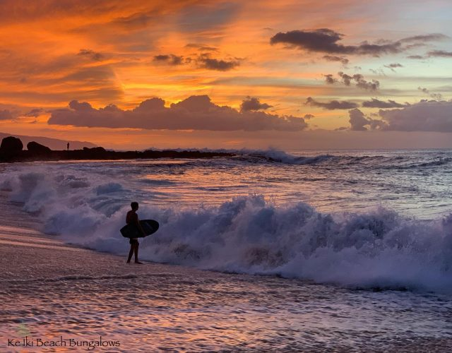 Leave those doubts behind and paddle out. Call 808-638-8229 to check available dates for this coming spring season 🌅 . . #keikibeachbungalows #keikibeach #northshoreoahu #northshore #pupukea #oahu #hawaii #hawaiilife #luckywelivehawaii #luckywelivehi #instahawaii #hawaiiunchained #808 #808life #808state #shorebreak #bigwaves #bigwave #endlesssummer #islandlife #clarklittle #aloha #livealoha #alohastate #alohavibes #bigsurf