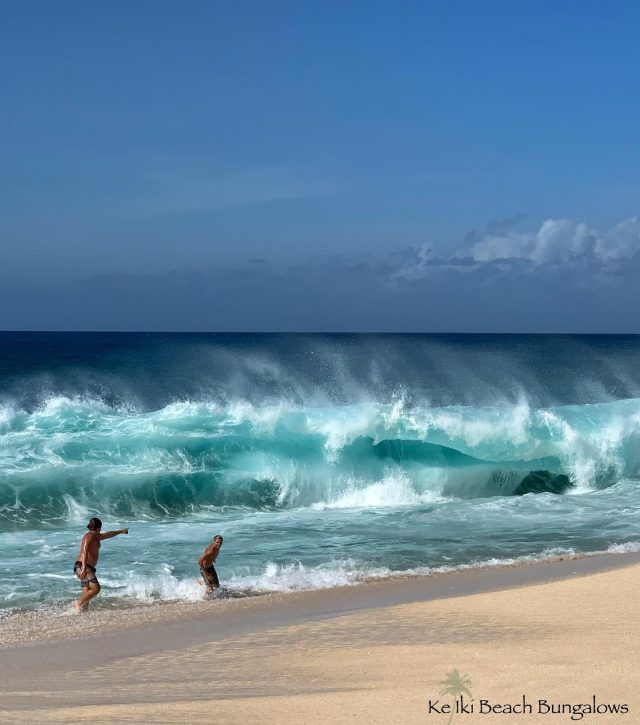 Reconsidering an afternoon swim at Ke Iki Beach 🌊😮😉 . . #keikibeachbungalows #keikibeach #northshoreoahu #northshore #pupukea #oahu #hawaii #hawaiilife #luckywelivehawaii #luckywelivehi #instahawaii #hawaiiunchained #808 #808life #808state #shorebreak #bigwave #bigwaves #endlesssummer #islandlife #islandliving #aloha #livealoha #alohastate #shorebreakers #bigsurf