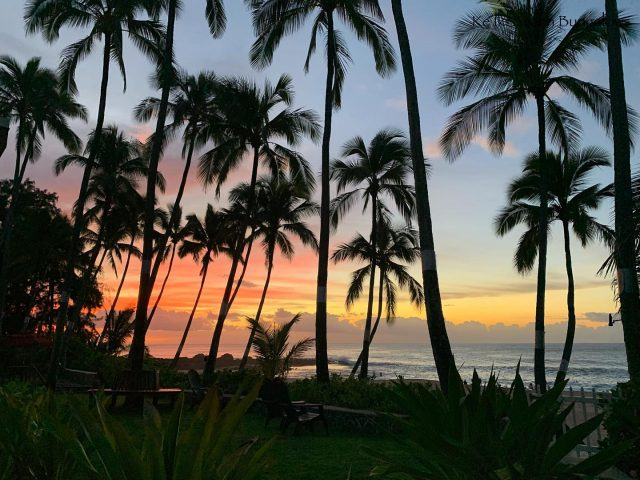 Pau hana time at Ke Iki Beach (but isn't it always??) 🌅 . . #keikibeachbungalows #keikibeach #northshoreoahu #northshore #pupukea #oahu #hawaii #hawaiilife #luckywelivehawaii #luckywelivehi #instahawaii #hawaiiunchained #808 #808life #808state #beachfront #hawaiiantropic #beachbungalow #endlesssummer #hawaiisunset #hawaiiansunset #aloha #livealoha #alohastate #alohavibes #alohastateofmind