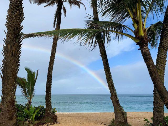 It's been pretty wet here lately but you know how it goes, without the rain there could be no rainbows 🌈 (yes, we're poets too) . . #keikibeachbungalows  #pupukea #sunsetbeach #haleiwa #northshoreoahu #northshore #hawaiilife #hawaiistagram #instahawaii #luckywelivehawaii #luckywelivehi #808 #808life #808state #hawaiirainbow #hawaiianrainbow #livealoha #alohastate #alohavibes #alohalife #alohaaina #aloha #alohafriday #happyalohafriday #alohaeverywhere #alohaeveryday #rainbowwarriors