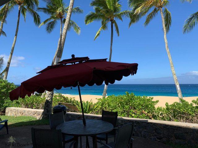 """Spring is here ☀️ But don't worry, we have a place for you """"shady"""" characters too 😎 . . #keikibeachbungalows #keikibeach #northshoreoahu #northshore #pupukea #oahu #hawaii #hawaiilife #luckywelivehawaii #luckywelivehi #instahawaii #hawaiiunchained #808 #808life #808state #palmtrees #hawaiiantropic #beachbungalow #endlesssummer #islandlife #islandliving #aloha #livealoha #alohastate #alohavibes #alohastateofmind"""