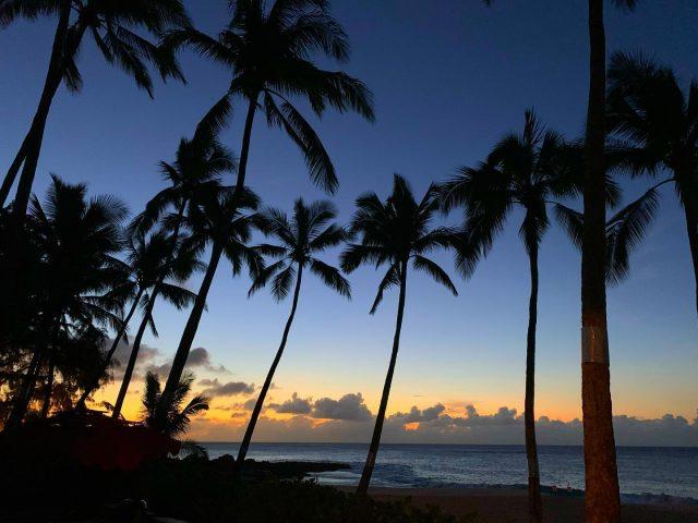 May your evenings look something like this 🌅 And if not, you know who to call 😉 . . #keikibeachbungalows #keikibeach #northshoreoahu #northshore #pupukea #oahu #hawaii #hawaiilife #luckywelivehawaii #luckywelivehi #instahawaii #hawaiiunchained #808 #808life #808state #palmtrees #hawaiiantropic #beachbungalow #endlesssummer #hawaiisunset #hawaiiansunset #aloha #livealoha #alohastate #alohavibes #alohastateofmind